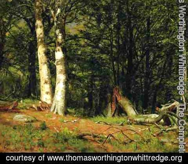 Thomas Worthington Whittredge - Fallen Birch